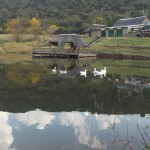 Emalathini Guest Farm | Piet Retief